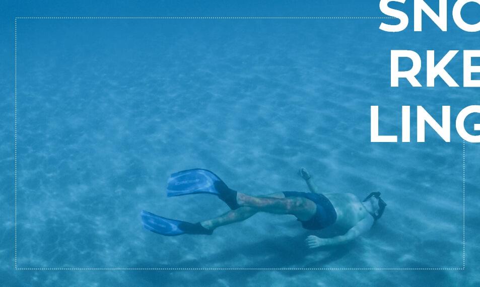 Snorkeling στα Κουφονήσια | Seagnatour